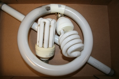 fluorescent bulbs  and tubes website.jpg